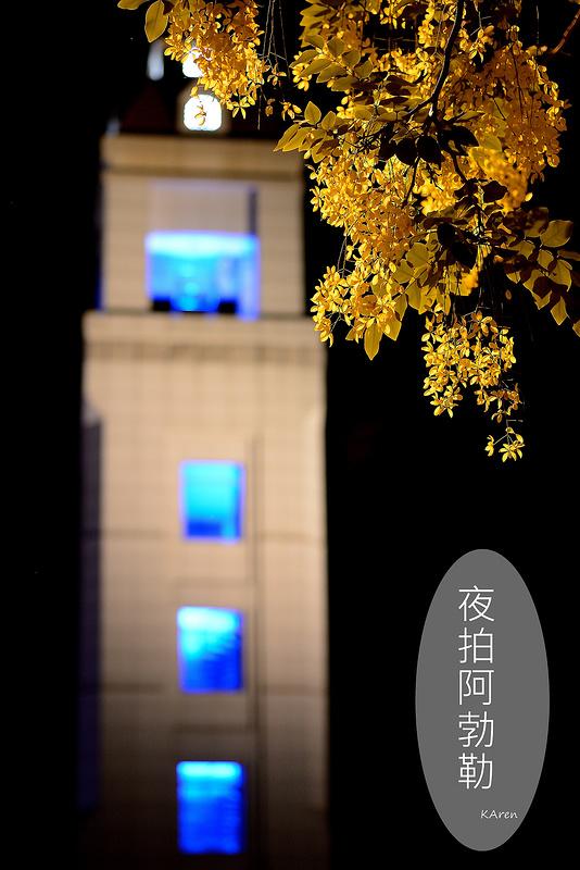 [台中。北屯區] 旱溪東路阿勃勒夜拍